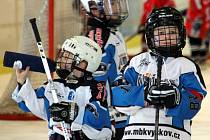 Grand Prix Vyškov je největší turnaj v republice pro hokejisty kategorie žáků druhých tříd.