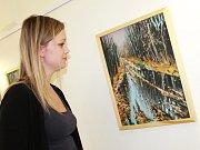 Na výstavě v Turistickém informačním centru ve Vyškově Radoslav Kočár představuje hlavně krajinomalby.