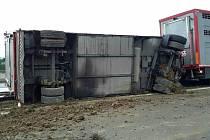Dálnici u Ivanovic na Hané v pondělí ráno zablokoval převrácený kamion s prasaty.