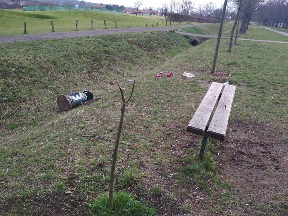 Případ v aleji u golfového hřiště.