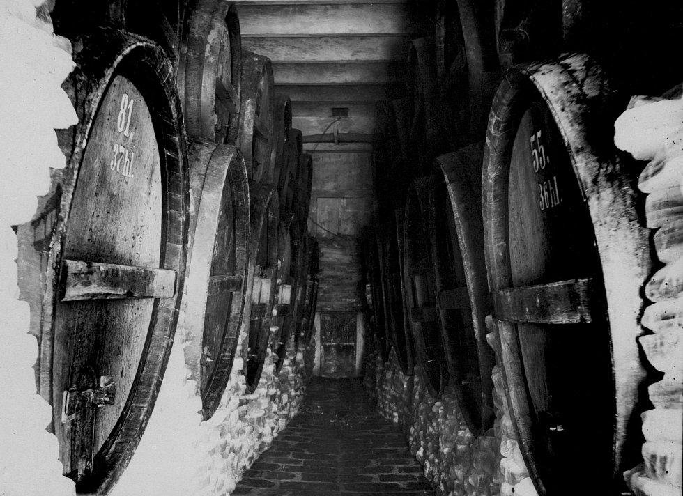 Vyškovský pivovar po těžkém období nabírá sílu a chce rozšířit řady svých zákazníků. Na trh tak uvádí nejen nová piva, zapamatovat si ho lidé mají i podle nového loga.