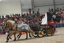 Poslední zářijový víkend se konal osmadvacátý ročník nejstarší středoevropské výstavy koní v Lysé nad Labem.
