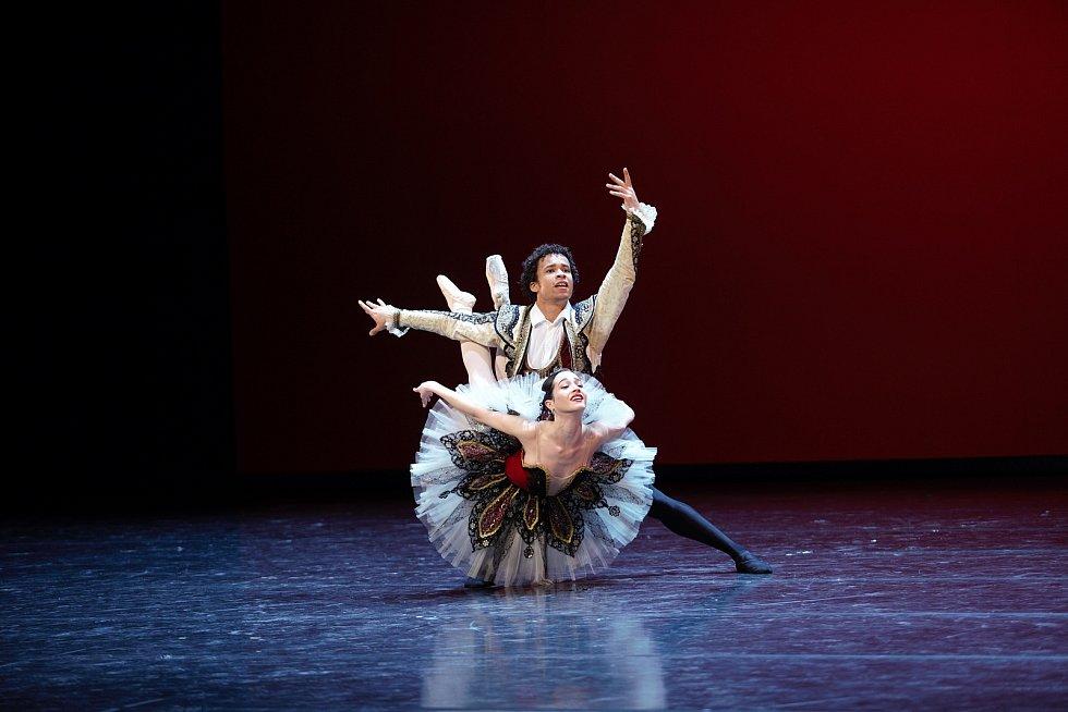 Soubor Baletu Národního divadla Brno zkouší v současnosti třeba inscenaci Don Quijote.