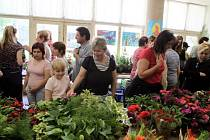 Všechno, co potěší zahrádkáře a milovníky přírody, vystavují tento víkend členové Českého svazu zahrádkářů Otnice v prostorách místní základní školy.