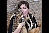 Irena Novotná založila v Holubicích Kočičí oázu. Chová v ní dvě stě sedmdesát koček a jedenáct psů.