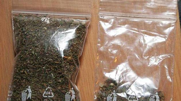 Marihuana, kterou objevili policisté v bytě Vyškovana podezřelého z výroby a distribuce drog.
