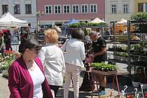 Prodejci se ve Vyškově scházejí na Masarykově náměstí.