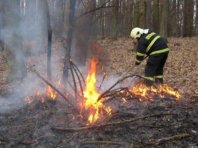 Požár lesa u Bučovic.