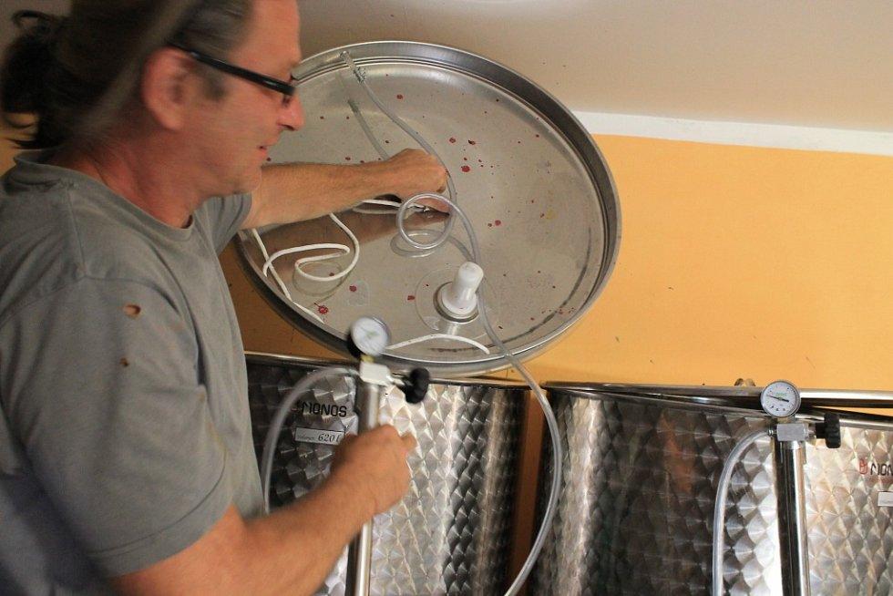 Ivo Pánek a Olga Švábová vyrábějí ovocné víno už několik let. Zhruba posledních šest měsíců je to však hlavní náplň jejich dnů. Risk zatím vychází, o víno je zájem.