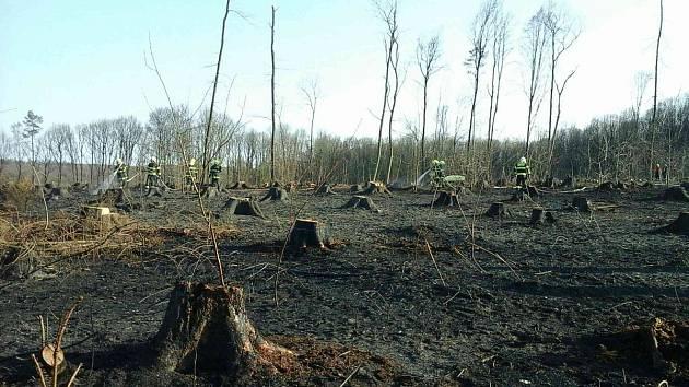 Na Vyškovsku hořela lesní hrabanka