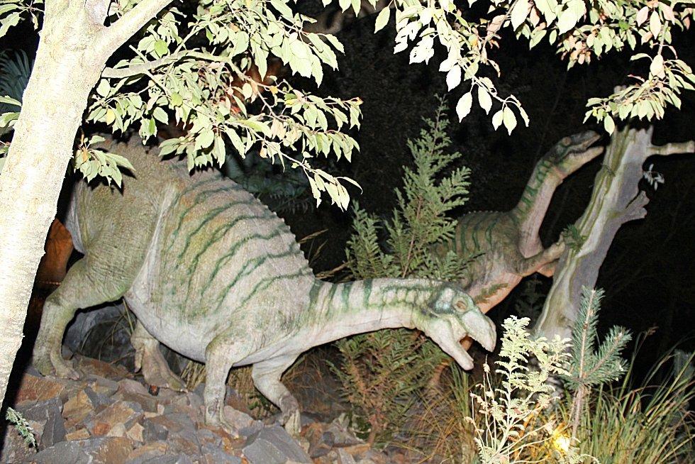 Spíš jako dobrodružnou výpravu než za stezku odvahy braly děti Noční prohlídku dinoparku ve Vyškově. Nasvětlených a řvoucích ještěrů se neděsily.