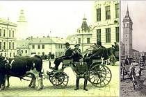 Zleva doprava. Koňští handlíři v bričce tažené volky, před školou ve Vyškově při trhu, rok 1947. Soužití koně a krávy o týdenním trhu ve Vyškově v roce 1930.