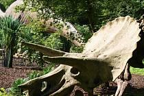 Páreček býložravců a zejména pak masožravce budou nově obdivovat návštěvníci vyškovského dinoparku. Turisté můžou nově platit pomocí karet.