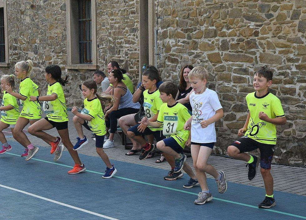 Dne 17. července se konaly ve Vyškově bežecké závody pro dospělé i pro děti.