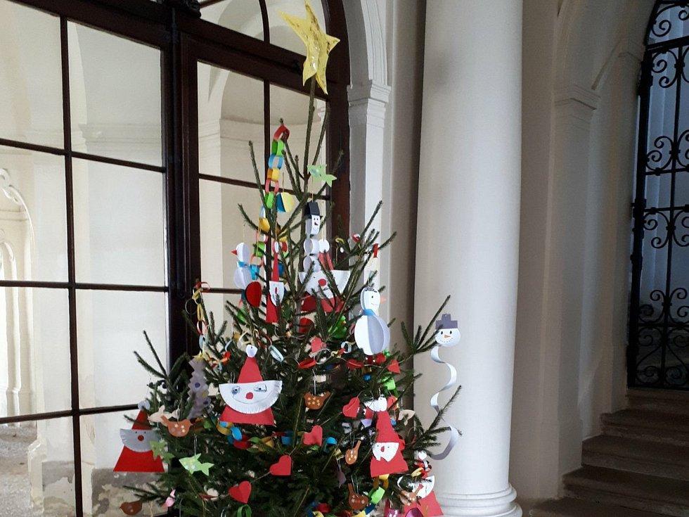Na žáku ve Slavkově u Brna mají novu výstavu. Ukazují vánoční stromky.
