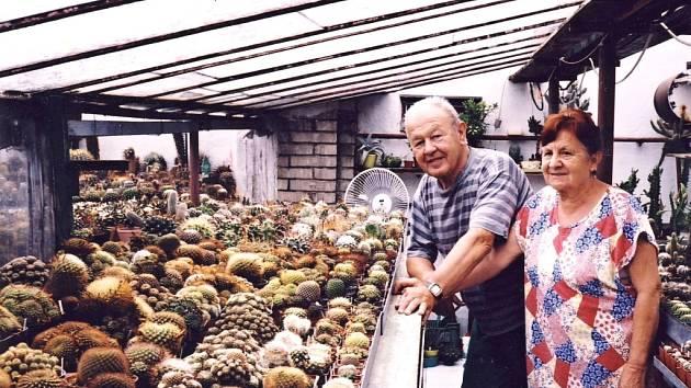 Manželé Kneslovi z Vážan nad Litavou už padesát let pěstují kaktusy.