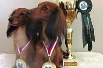 Šampionky z Ivanovic na Hané Hennessy a Afrodita.