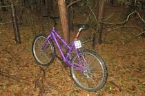 Poblíž místa činu našli policisté jízdní kolo.