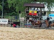 Drsní kovbojové i odvážné dámy v sedlech, telata ze Slovenska a dobytkářské i rychlostní disciplíny. Na Velkém moravském rodeu v Bohdalicích bylo co obdivovat celou sobotu.