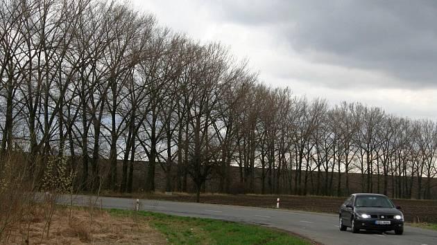 Vítr zastaví stromy, ve Vranovicích vysází také nové aleje