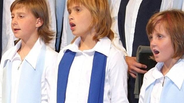 Na festivalu ZpívejFest vystoupí také domácí Motýlek ze soukromé hudební školy AM. V současné době má sbor šedesát členů. Široký repertoár sboru zahrnuje skladby staré duchovní hudby, renesance, baroka, ale i skladby soudobých autorů a lidové tvořivosti.