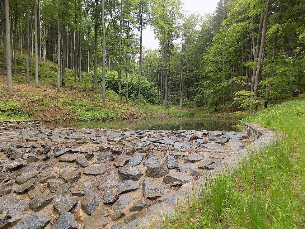 Vojenské lesy a statky se pustily do výstavby a obnovy rybníků. Na snímku Vystřelený rybník.