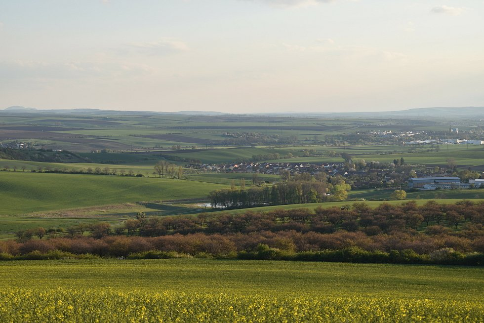 Výhled na Němčany, meruňkový sad, terasy a lom i slavkovský Urbánek.