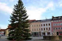 Vánočním stromem je letos ve Vyškově jedle.
