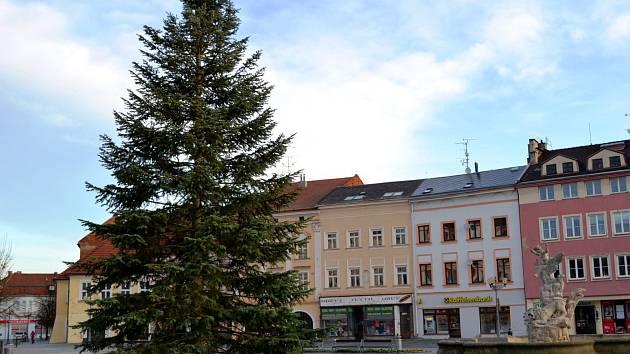 Vánočním stromem byla v roce 2019 ve Vyškově jedle.
