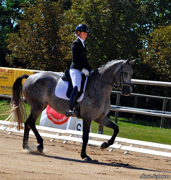Milovníci koní si užili první zářijovou sobotu jezdecký den ve Vyškově.