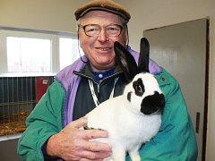 Ve Vyškově se v sobotu dopoledne uskutečnila sedmadvacátá prodejní výstava králíků.