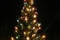 Vánoční strom v Lysicích
