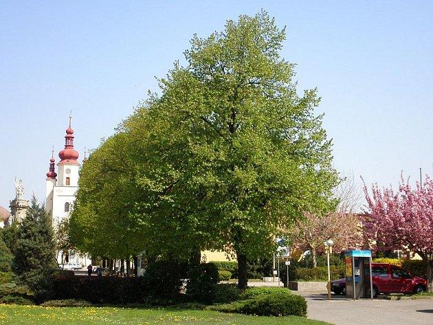 Města i obce považují údržbu zelených ploch za svoji prioritu. Například Ivanovice na Hané letos vynaložily na květinovou výzdobu přes sto tisíc korun.