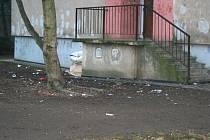 Lidem z Albrechtovy ulice vadí nepořádek, který tam podle nich dělají jejich nepřizpůsobiví sousedé.