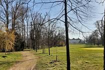 Tradiční velikonoční akce museli ve Slavkově letos zrušit podobně jako ve zbytku regionu. V zámeckém parku umožnili alespoň procházku s hledáním a poznáváním stromů dle znamení zvěrokruhu.