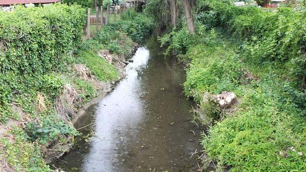 Do Velké Hané ve Vyškovských Dědicích podle některých obyvatel někdo vypouští odpadní vodu. Podle Vodovodů a kanalizací Vyškov jde jen o vyústění odlehčovací komory.