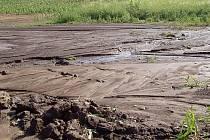 Zemědělcům nevzešlo obilí, tak nasadili alespoň kukuřici. Ta ale nezadrží vodu.