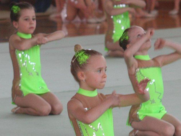 Nejen nejmladší vyškovské naděje ukázali na domácí akci, že jsou připraveny na mistrovství České republiky.