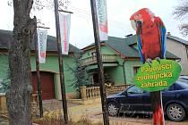V papouščí zoologické zahradě v Bošovicích je okolo sto padesáti exemplářů ze všech částí světa.