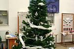 Sál vyškovské Knihovny Karla Dvořáčka zabrala tradiční výstava vánočních dekorací.