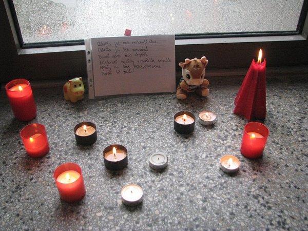 VZákladní škole vRaškovicích, kde zavražděná Denisa ještě před několika roky chodila, vzniklo pietní místo