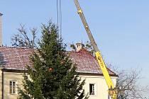 Vánoční smrk na frýdeckém náměstí je téměř dvanáct metrů vysoký a pochází z lokality Riviera.