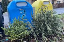 Sběr vánočních stromků v Třinci startuje.