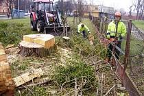 Kácení dřevin potrvá ve Frýdku-Místku do konce března.
