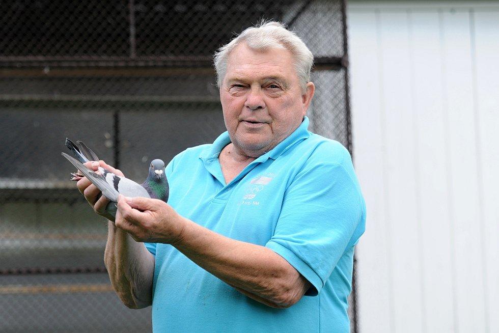 Čtyřnásobný olympionik Vítězslav Mácha je celý život vášnivým holubářem. Se svým bratrem chová okolo 150 poštovních holubů.