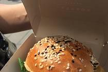 Burger street festival se uskutečnil o víkendu před OC Frýda ve Frýdku-Místku.