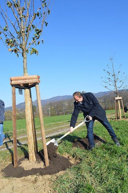 Starostové vysázeli gorolskou Alej obcí