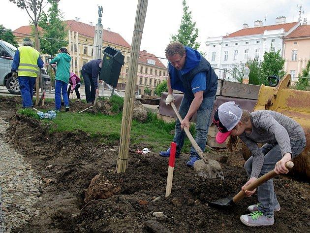 Lidé mohou posílat návrhy na výsadbu nového stromořadí