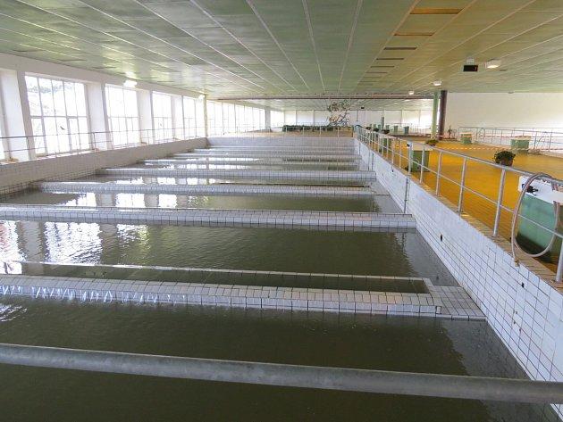 Úpravna vody v Nové Vsi. Ilustrační foto.