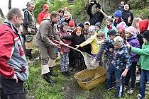 Stovku pstruhů potočních pomáhali v Třinci pod vysokou pecí vypustit hokejista Jiří Polanský s dcerkami a místní školáci, další pstruhy vypustili rybáři dál po toku Olše.
